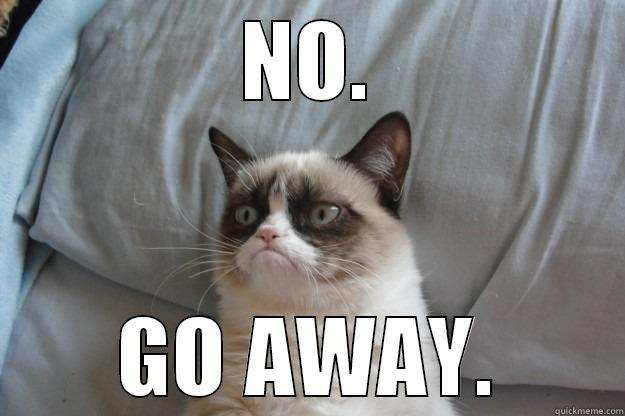 Grumpy Cat says go away